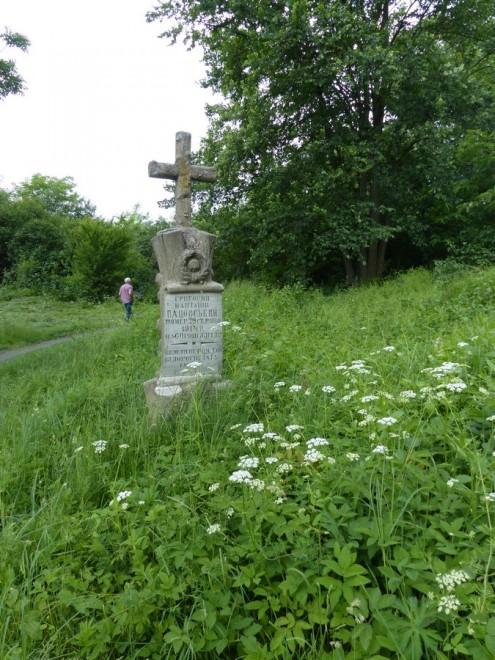 Mogiły cmentarza w Maciejowie